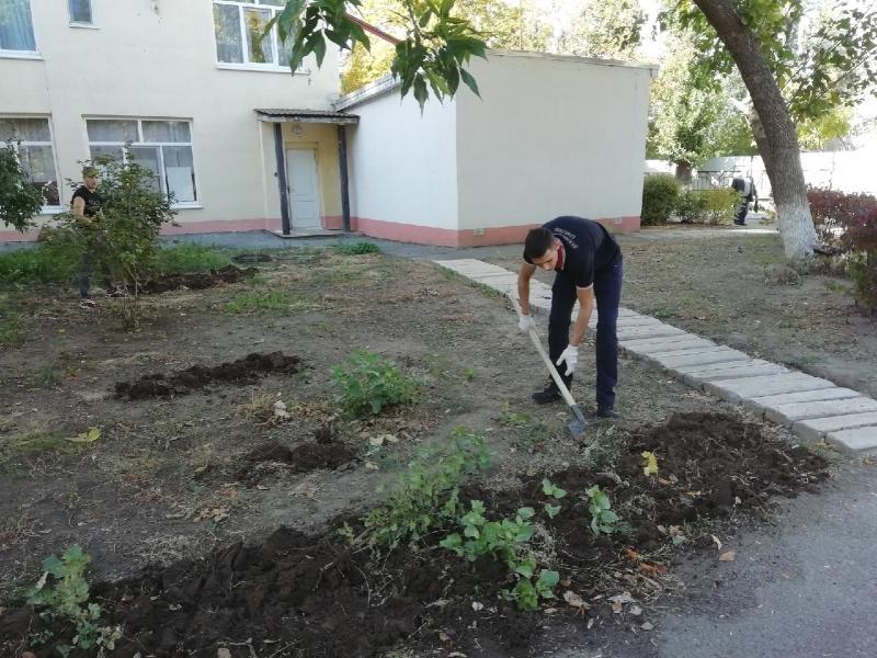 Волгодонские студенты помогли благоустроить территорию Волгодонского пансионата для престарелых и инвалидов