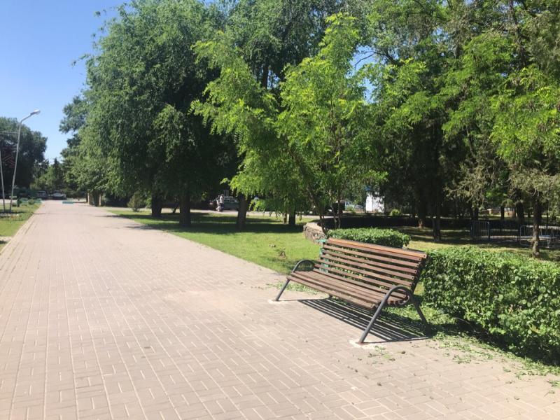 До +31 градуса прогреется воздух сегодня в Волгодонске
