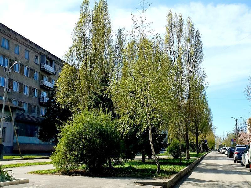 Солнечной, но прохладной будет пятница в Волгодонске