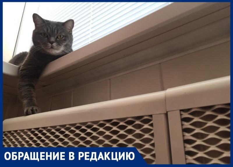 «Люди мерзнут в квартирах»: волгодонцы просят включить отопление