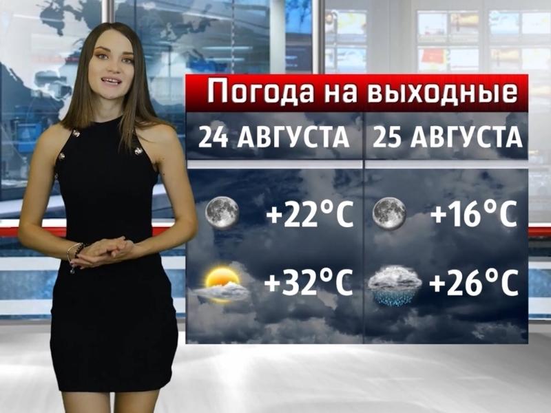 Жару в Волгодонске сменит дождь