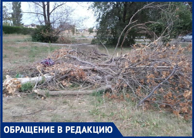 Последствия разбушевавшегося ветра в Волгодонске не убирают уже два месяца