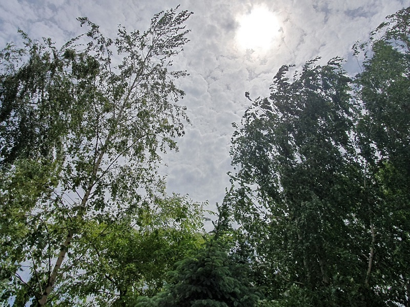 На Волгодонск надвигается непогода
