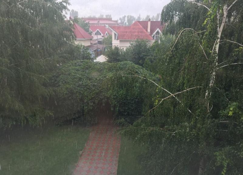 Ливневый дождь обрушится на Волгодонск сегодня