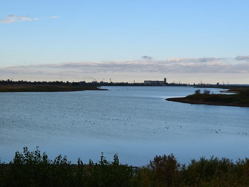 Каждый день Цимлянское водохранилище отступает на 0,7 сантиметра