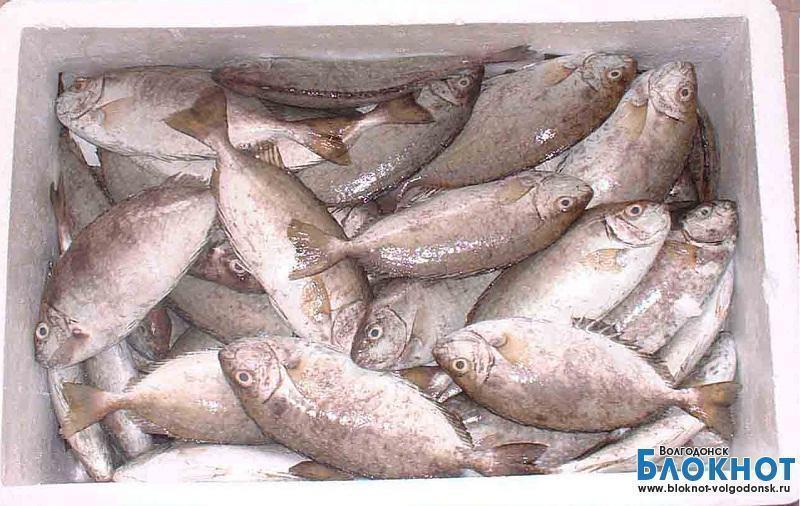 Волгодонские полицейские вновь обнаружили неучтенную рыбу