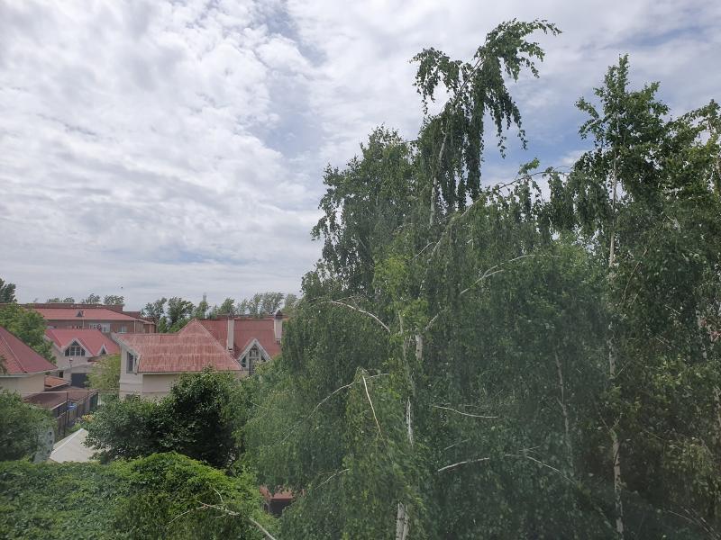 Ливневый дождь со шквалистым ветром обрушатся на Волгодонск сегодня