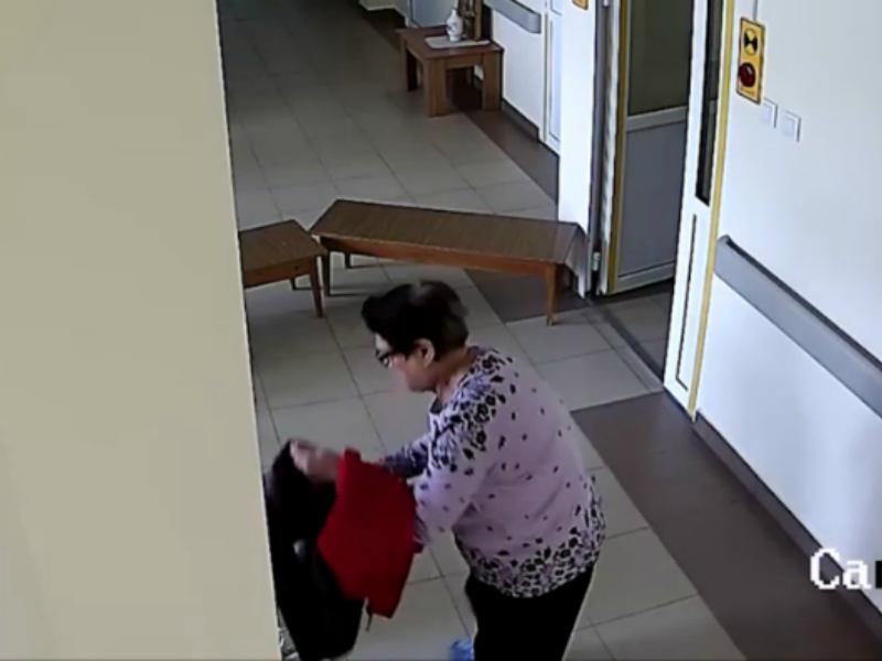 Пожилая пациентка украла цветок в терапевтическом отделении Волгодонска