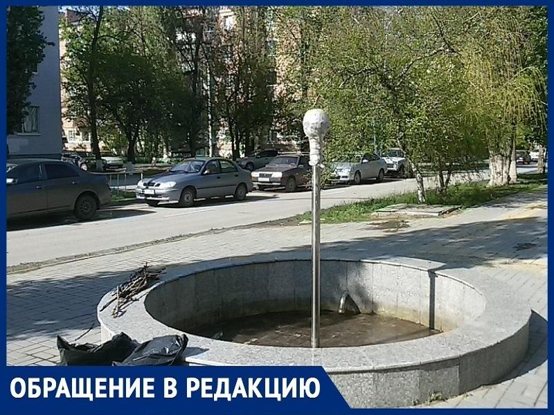 «В чем главная проблема фонтанов Волгодонска?»:  житель города