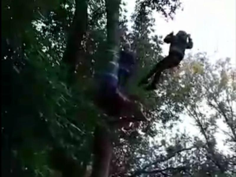 Двое школьников, рискуя жизнью, пытались покорить веревочный городок в Волгодонске