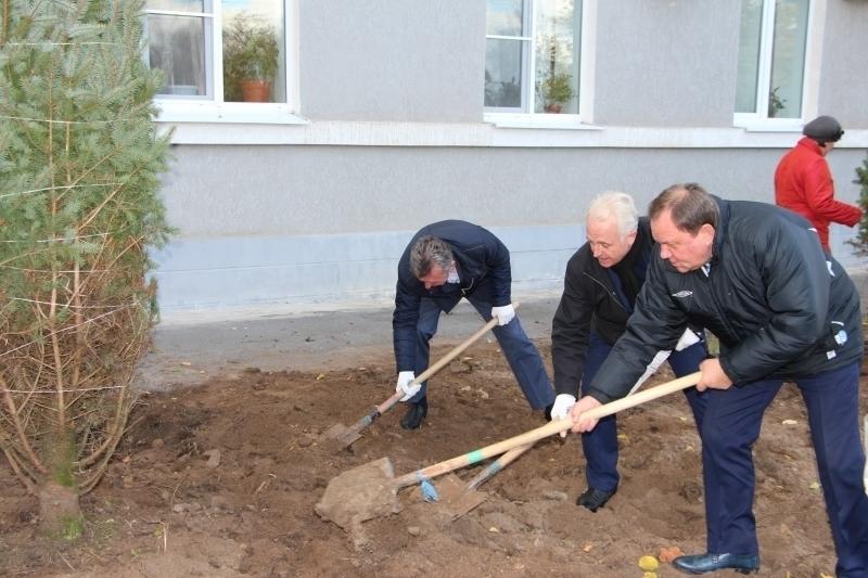 На торжественную высадку голубых елей собралась вся администрация Волгодонска и даже депутат госдумы Дерябкин