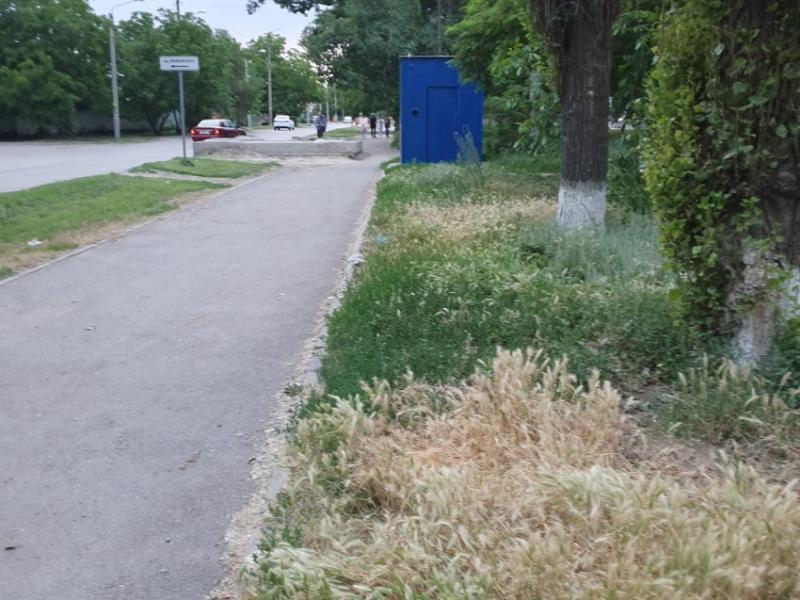 Свыше 60 человек ежедневно косят траву на территории Волгодонска