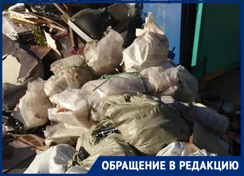 «За что мы платим?»: огромная мусорная свалка образовалась на Черникова