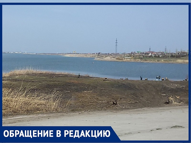 «Зачем уничтожать рощу рыбаков на Путепроводе?»: волгодонец