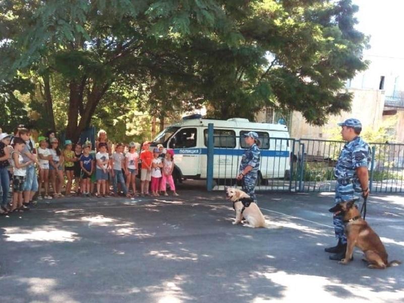 Полицейские собаки принесли радость школьникам Волгодонска
