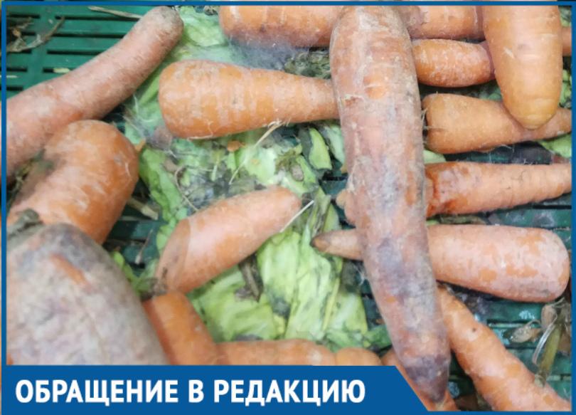Прилавок с заплесневелыми овощами вывел из себя волгодончанку