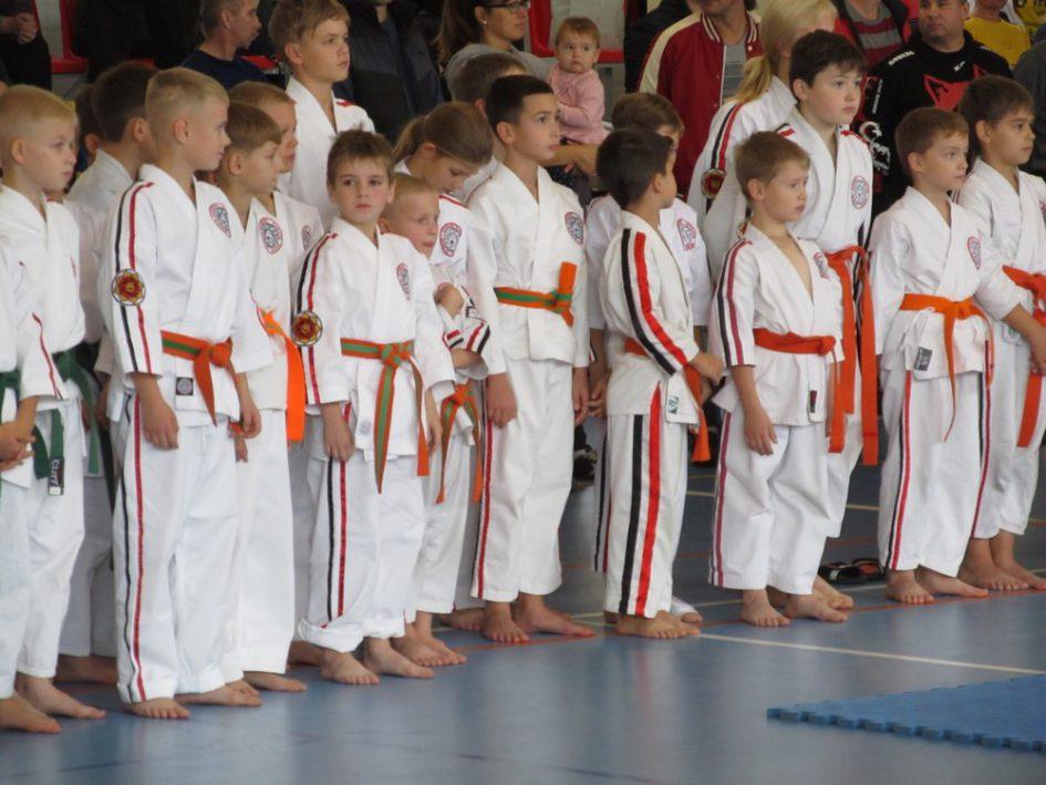 Волгодонцы успешно выступили на международном турнире по контактному косики каратэ