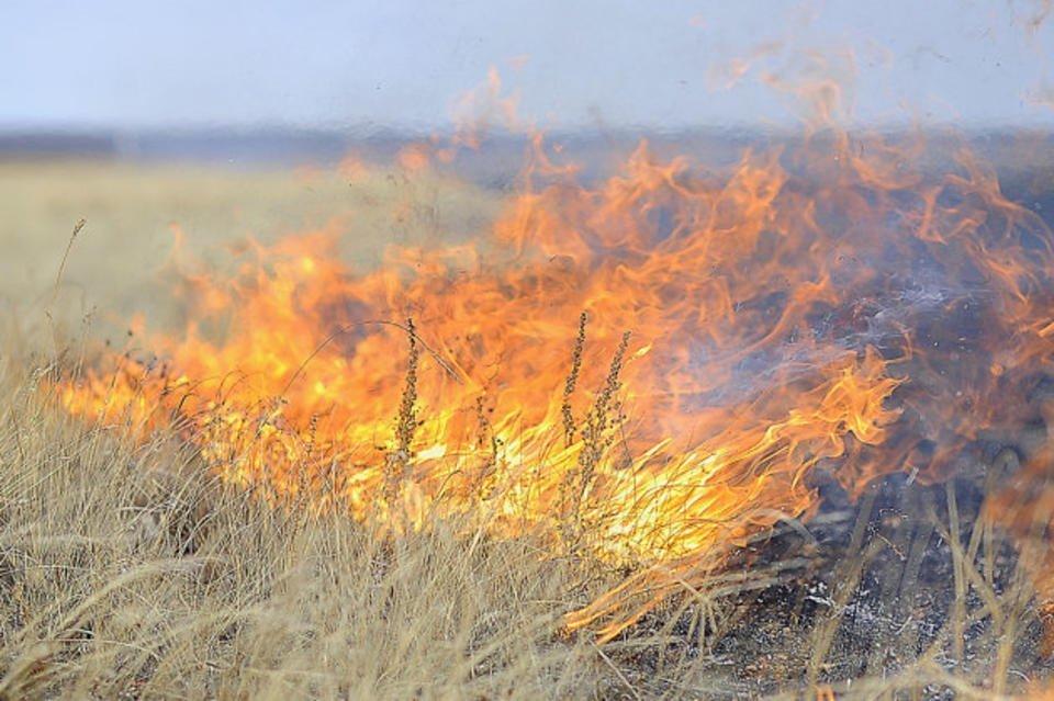 В Волгодонске и ближайших районах сохраняется высокая пожароопасность