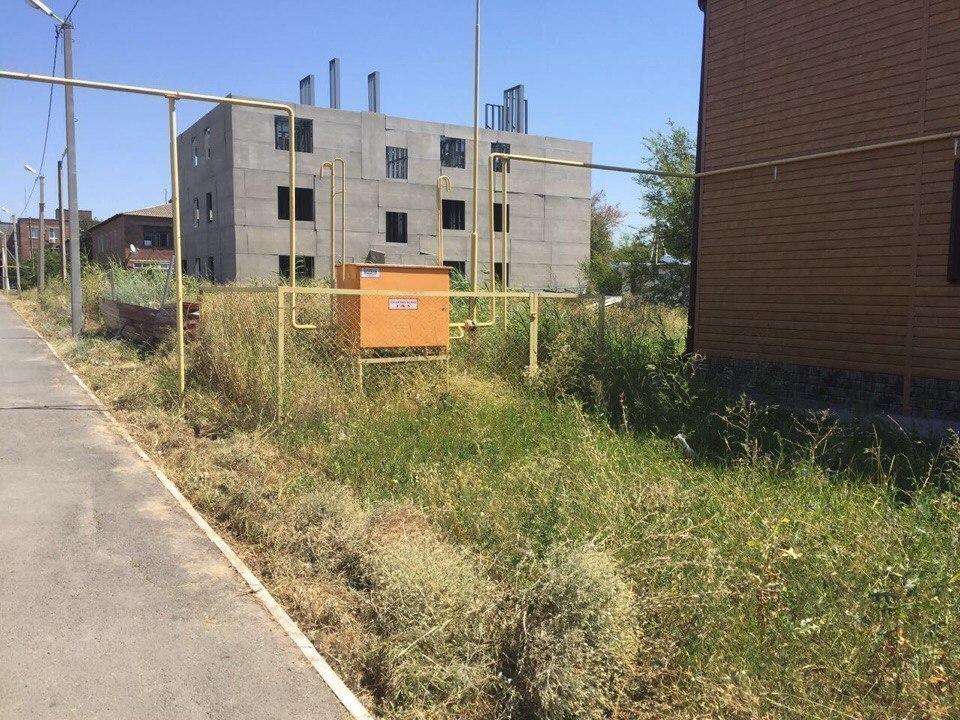 Сиротам выдали жилье в деревянном доме, окруженном кушерями, - жительница станицы Романовской