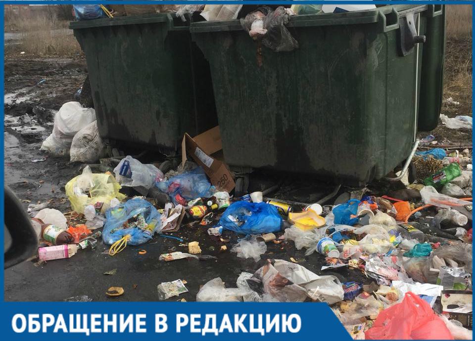 «Рождественская» помойка стала страшным кошмаром для жителей Волгодонска