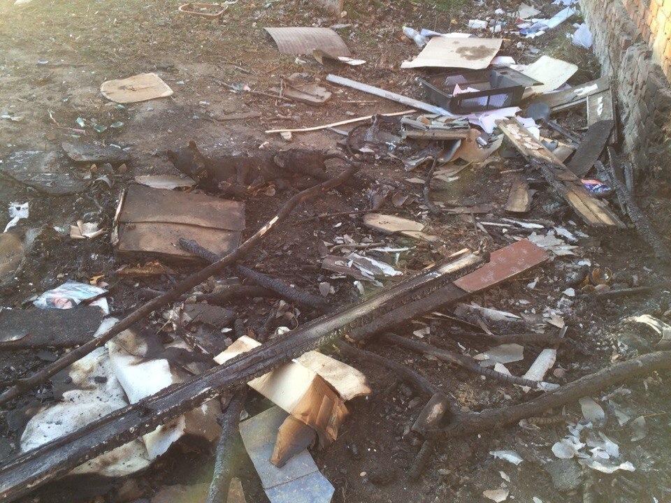 В Волгодонске возле МИФИ заживо сожгли собаку