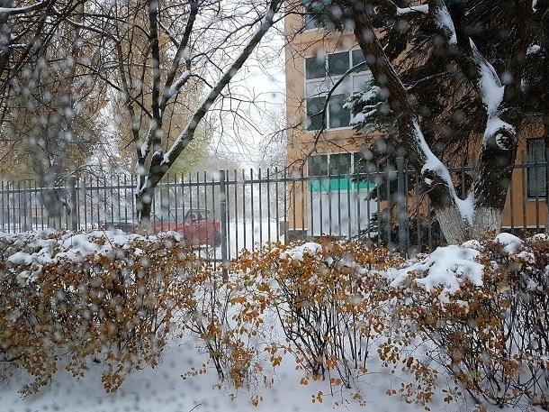 На протяжении всего дня в Волгодонске будет идти обложной снег