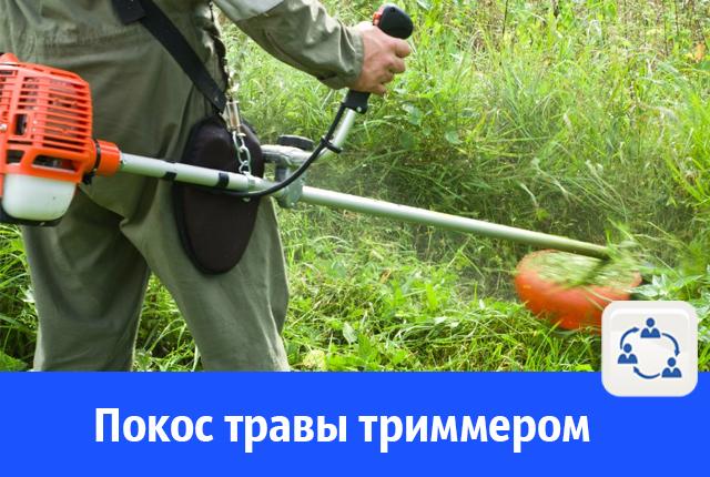 В Волгодонске готовы покосить траву триммером