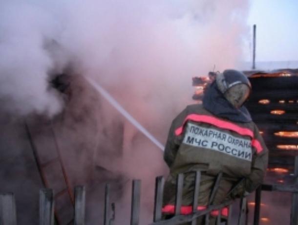 Трое детей и мать сгорели в жутком пожаре в Волгодонском районе
