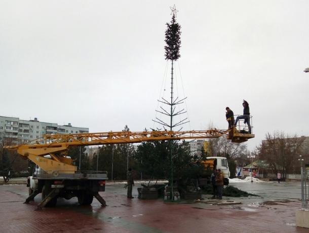 В Волгодонске приступили к установке новогодней елки на ДК имени Курчатова