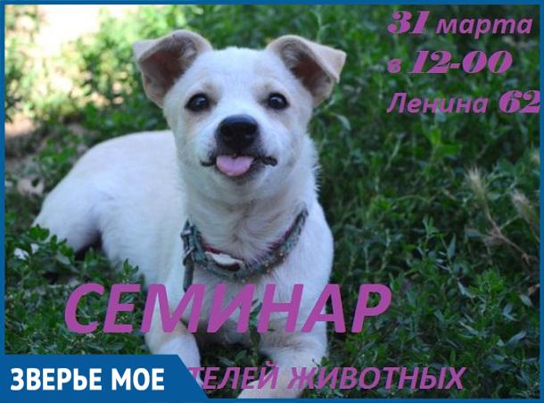 В последний день марта в Волгодонске любители животных смогут пообщаться с дрессировщиком, кинологом и другими специалистами