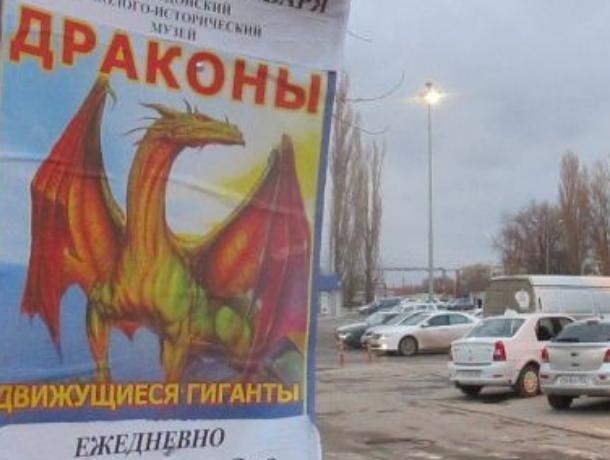 Расплодившиеся на деревьях Волгодонска «драконы» заставили попотеть муниципальную инспекцию