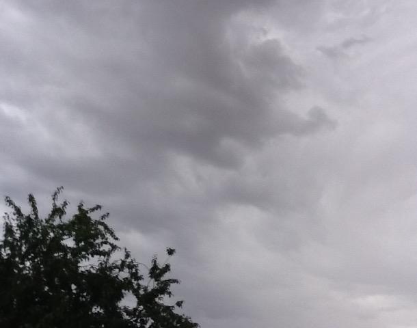 Кратковременные дожди и жара до 29 градусов ожидаются в Волгодонске